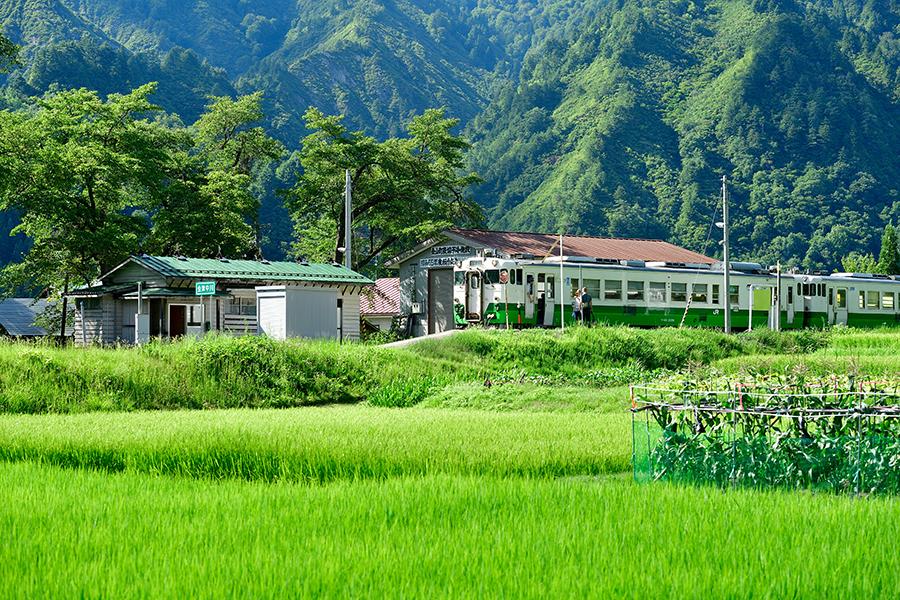 nakagawanatu