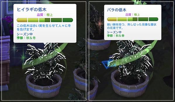 Sea_K13-12.jpg