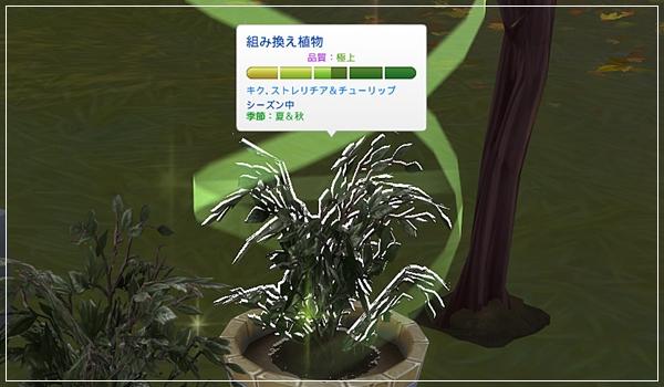 Sea_K13-15.jpg