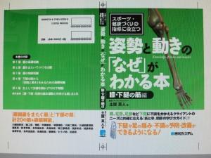IMG_4508.jpg