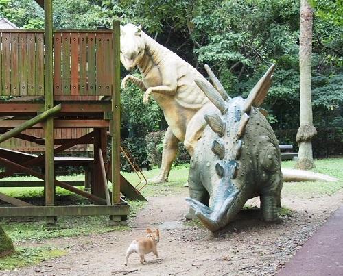 恐竜公園7