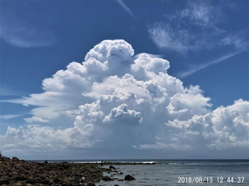 淡路島最南端の磯