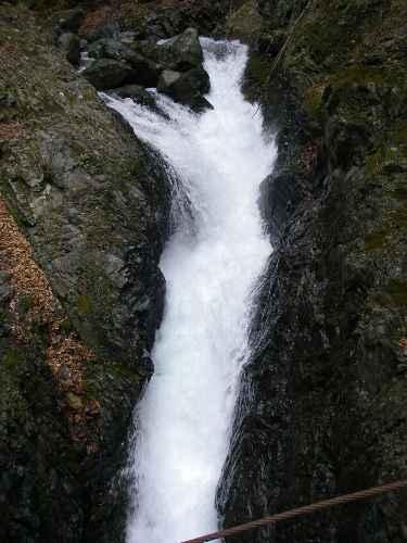 ウソッコ小屋横の滝