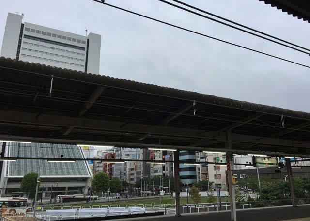 IMG_3661~photo