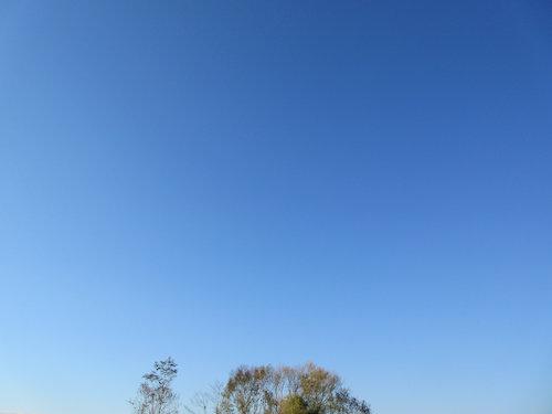 18.10.14.つれづれ