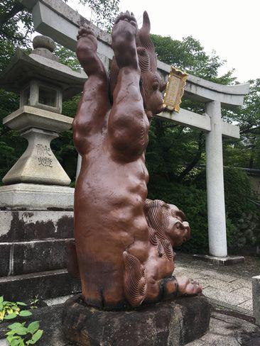 宗忠神社・逆立ち狛犬(吽形・うんぎょう)_H30.06.15撮影