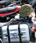 バイクの日 006