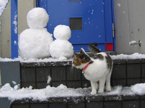 雪だるま凛