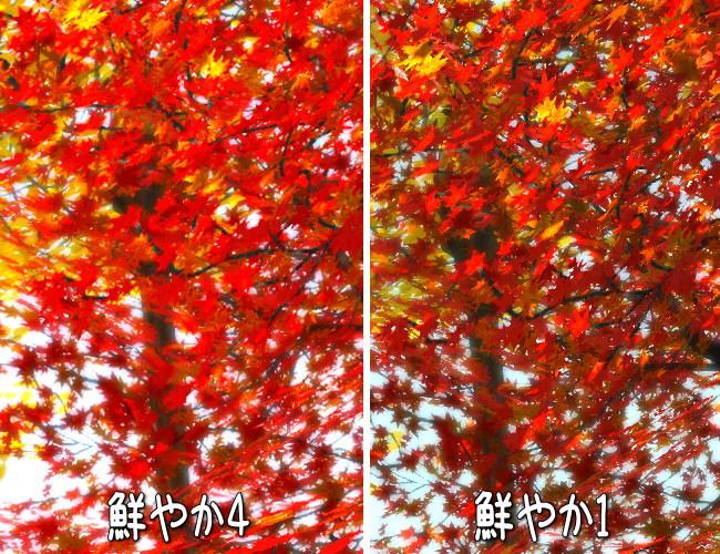 秋っぽいSS2