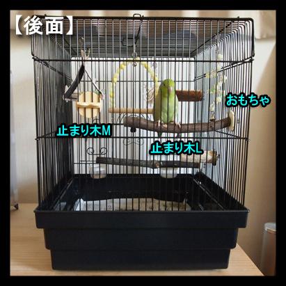 P8016181-4.jpg