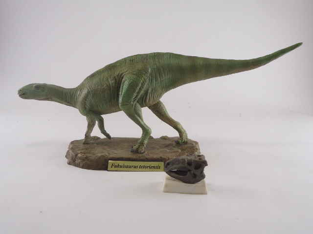 フクイサウルス11