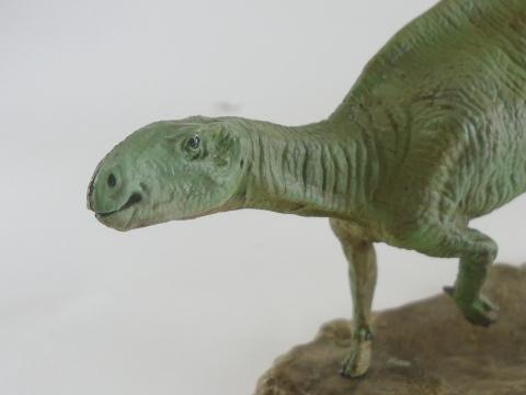フクイサウルス15