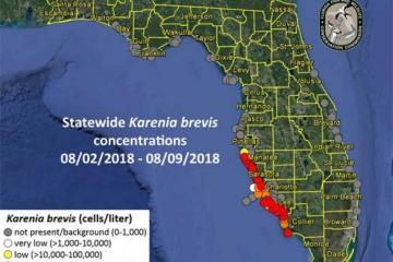 red-tide-map_convert_20180812101030.jpg