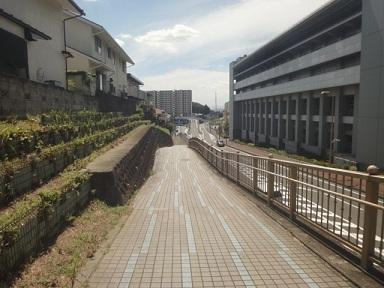 aruki382.jpg
