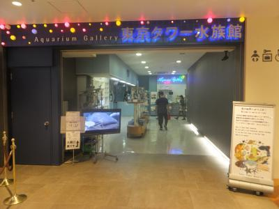 東京タワー水族館_(1)_convert_20180914145916