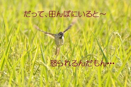 020_20180926191330ffd.jpg