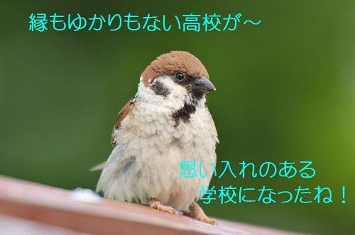 030_20180822192014b15.jpg