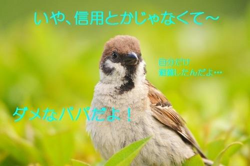 100_20180816183523854.jpg