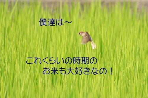 100_20180822192024edc.jpg