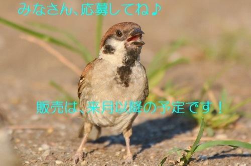 140_2018101022361608c.jpg