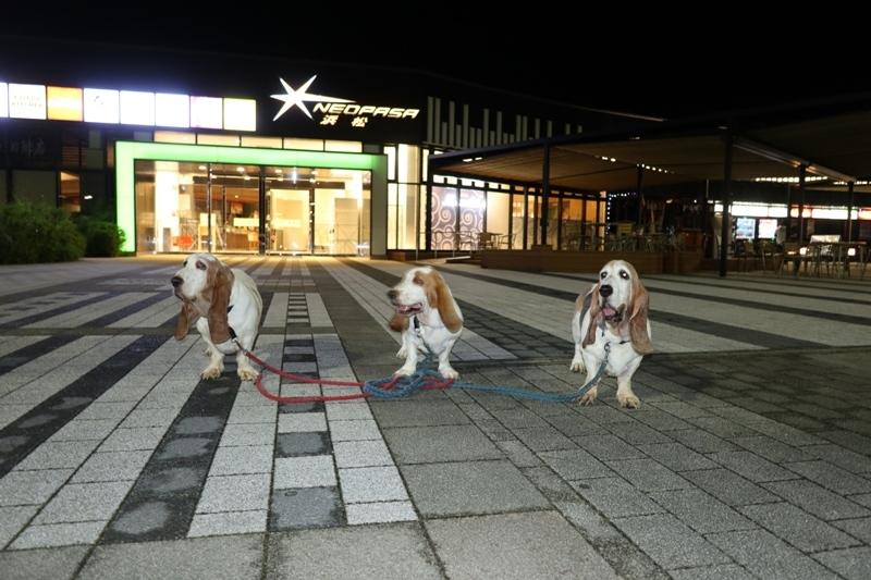 横浜0001