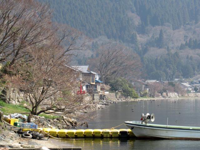 北琵琶湖・水辺景観7