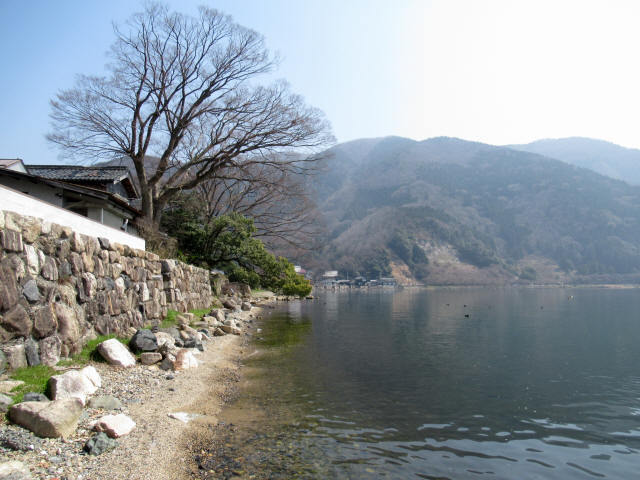 北琵琶湖・水辺景観3