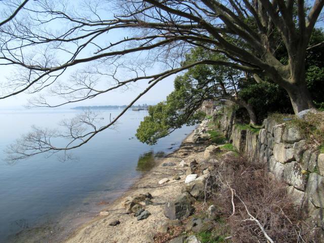 北琵琶湖・水辺景観5