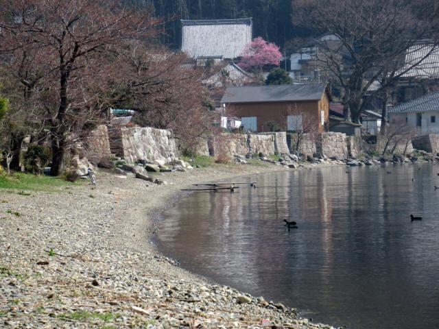 北琵琶湖・水辺景観4