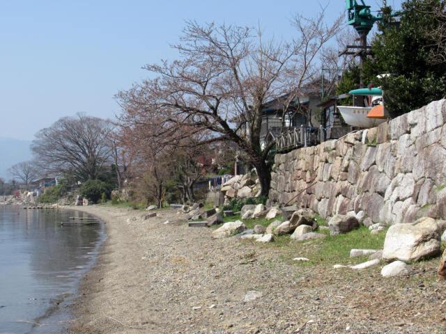 北琵琶湖・水辺景観2