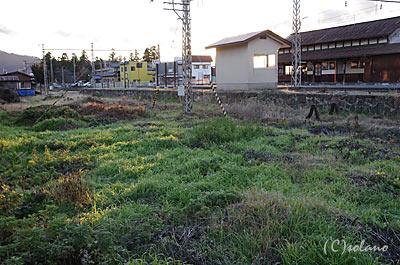 長野電鉄・綿内駅構内、すっかり草生した側線跡