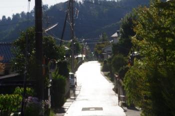 別所温泉 常楽寺の帰り道に光る道