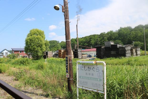 富良野13