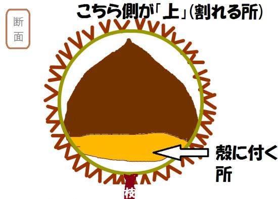 snap_takodako(1)_201890125832.png