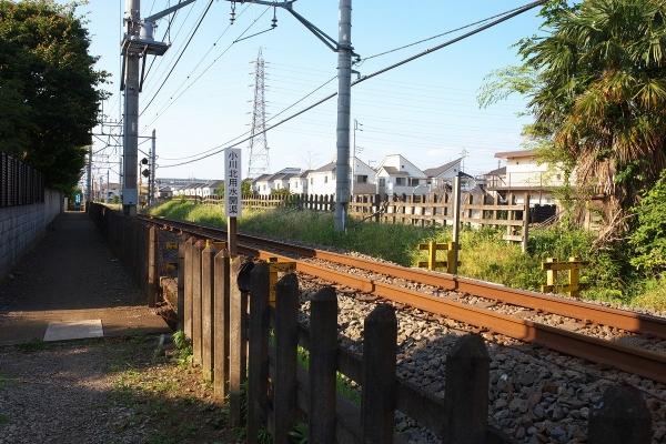 180602_163356_小川北用水開渠1200
