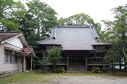 180807奈良本泉寺のスダジイ
