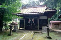 180807熊野神社の大イチョウ