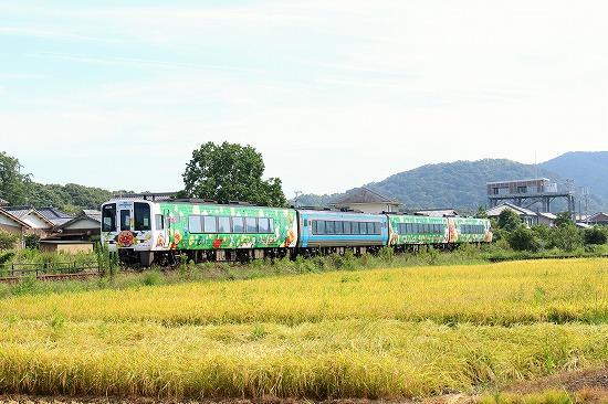 ⑪土佐入野~西大方アンパンマン列車