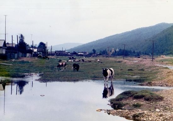 ㉘バイカル田舎の風景 (550x385)
