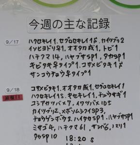 2018-09-19-2.jpg