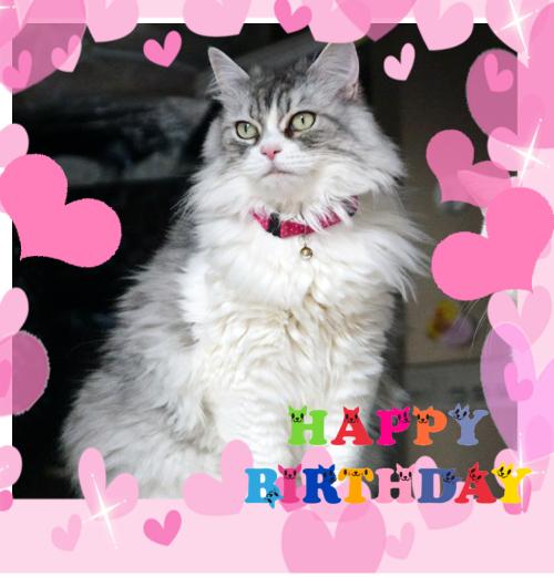 birthday-Leah2.jpg