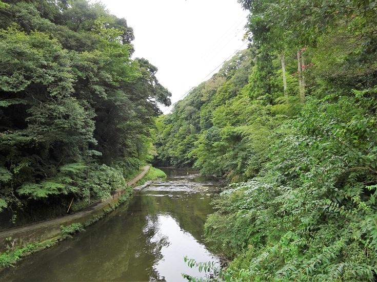 ⑪弘文洞への道
