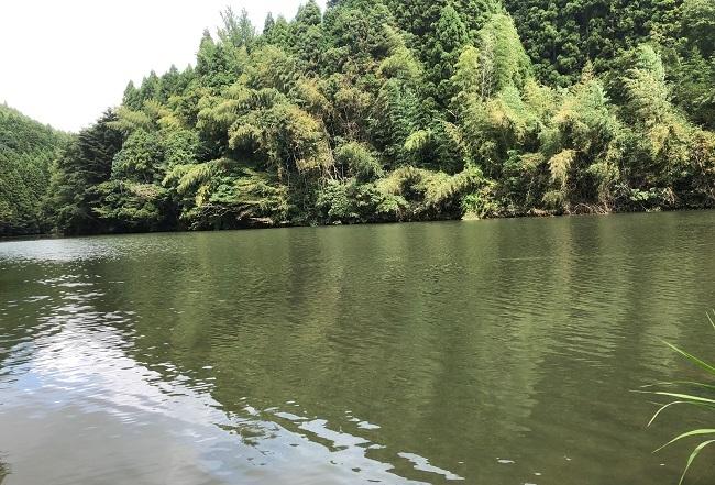 鮫川 158kb