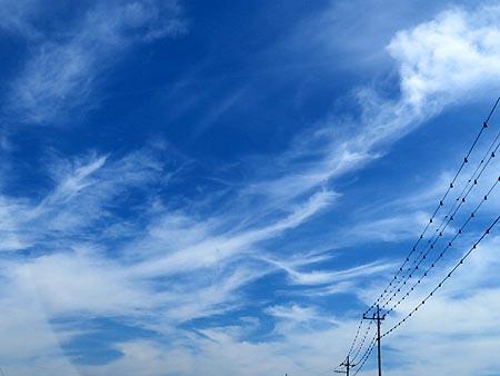 820秋雲