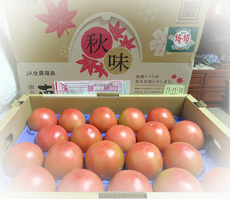 930会津南郷トマト