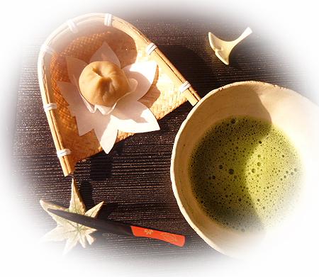 924茶金巾