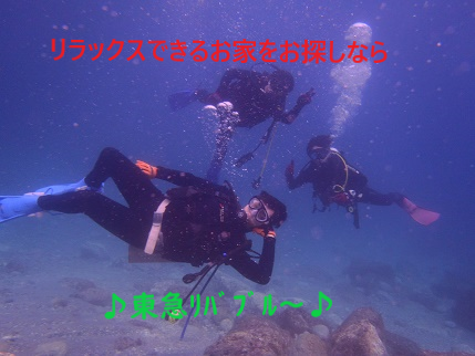 PA030029.png