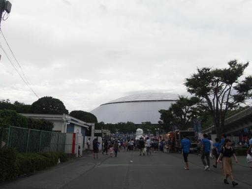 20180816・野球観戦と散歩1-18
