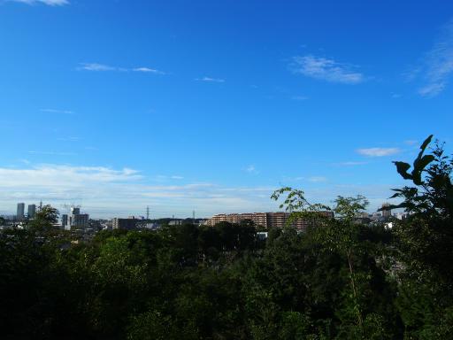 20180922・多磨霊園空11