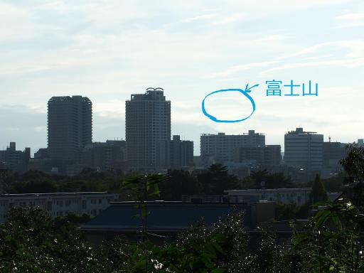 20180922・多磨霊園空18・答え